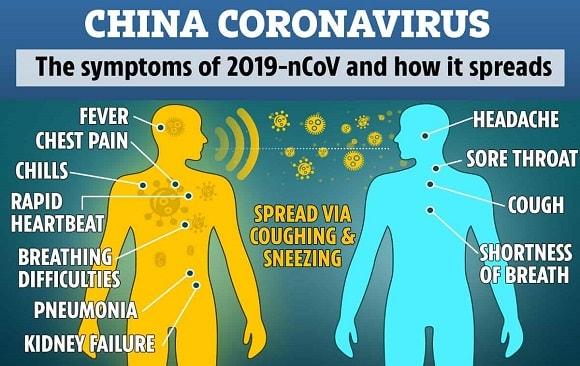 2019 Novel Coronavirus (2019-nCoV) JAN 26 2019 Novel Coronavirus (2019-nCoV)